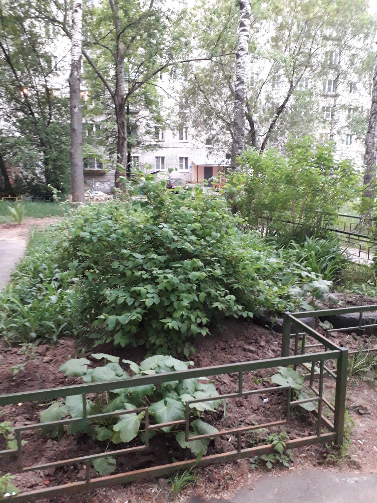 Продажа 3-комнатной квартиры Березовская ул., 116, Нижний Новгород